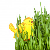 Chic toy in green grass — Stock Photo
