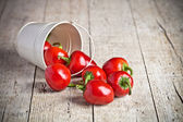 Red hot chilli peppers in little bucket  — Stock Photo