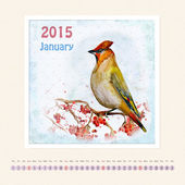 Calendar for january 2015 with bird — Stock Photo