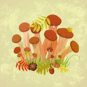 Mushrooms armillaria — Stock Vector