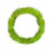 Wreath of pine twig — Vettoriale Stock