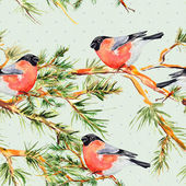 Pine branch and bullfinch — Stock Photo