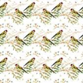 Cute birds watercolor — Stock Photo