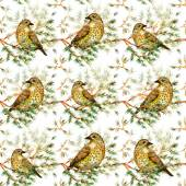 Cute birds on branch — Photo