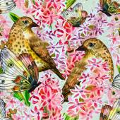 Birds and flowers — Stock Photo