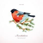 Bullfinch on branch pine. — Stock Vector