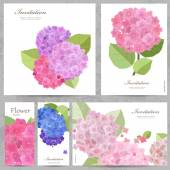 Beautiful flowers collection — Stock Vector