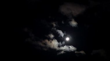 Moonlit night with fleecy clouds passes on dark blue sky — Stock Video