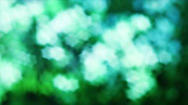 Nice green nature foliage star shaped bokeh — Stock Video