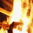 Charming bonfire flame blazing in the night, closeup view — Stock Video #68633911
