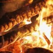 Charming bonfire flame blazing in the night, closeup view — Stock Video #68634149