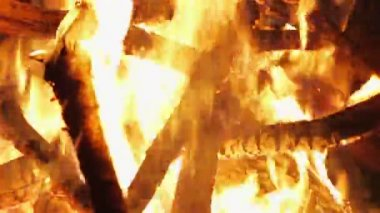 Charming bonfire flame blazing in the night, closeup view — Stock Video