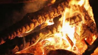 Charming bonfire flame blazing in the night, closeup view — Vidéo