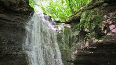 Forest waterfall falling on rocky cliff in sunny summer day — Stock Video