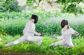 Two rapier fencer women fighting over beautiful nature park back — Stock Photo