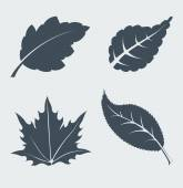 Vector hojas. — Vector de stock