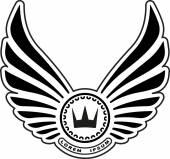Heraldic design with wings — Stock Vector