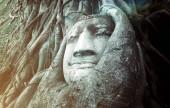Alten Baum Buddha Stein Skulptur. — Stockfoto