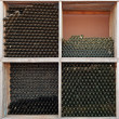 Rows of  empty wine bottles. — Stock Photo #52896685