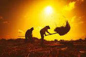 Farmers silhouettes — Stock Photo