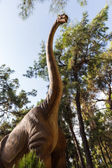 Diplodocus herbivorous dinosaur walking forest — Stock Photo
