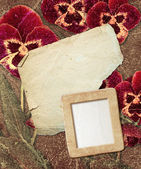 Grunge frame with pansy and paper  — Foto de Stock