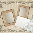 Grunge frame with roses and paper  — Stock Photo #62789463