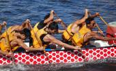 Training for the Dragon Boat Races — Stock Photo