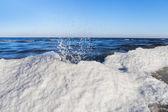 Winter at Baltic sea. — Stock Photo