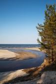 Baltic sea coast. — ストック写真