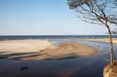 Baltic sea coast. — Stock Photo