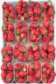 Fresh strawberries. — Stock Photo