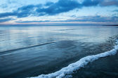 Cold Baltic sea in early winter. — Stock Photo