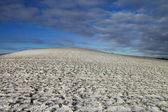 Snowy land. — Stock Photo