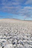 Snowy hill. — Stock Photo