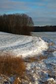 Winter landscape. — Stock Photo