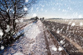 Blizzard in countryside. — Stock Photo