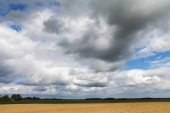 Summer clouds. — Stock Photo