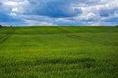 Green field and dark sky. — Stock Photo