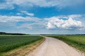 Latvian landscape. — Stock Photo