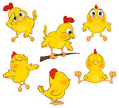 Set of Cartoon chickens — Stock Vector