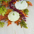 Autumn decoration of cymbling — Stock Photo #53020727