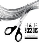 Hair and scissors on a white background — Stock Vector
