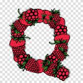 Letter Q made from red berries, sketch for your design. — Vecteur