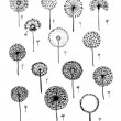 Dandelions collection, sketch fro your design — Stock Vector #74482215