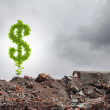 Dollar sign growing on ruins — Stock Photo #52538543