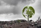 Conceptual green tree — Stock Photo