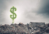 Dollar sign growing on ruins — Stok fotoğraf