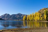 Picturesque landscape — Stock Photo