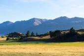 New Zealand alps and field — Stock Photo